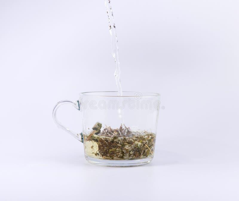 Лить горячая вода к стеклянной чашке с чаем, изолированным на белизне стоковая фотография