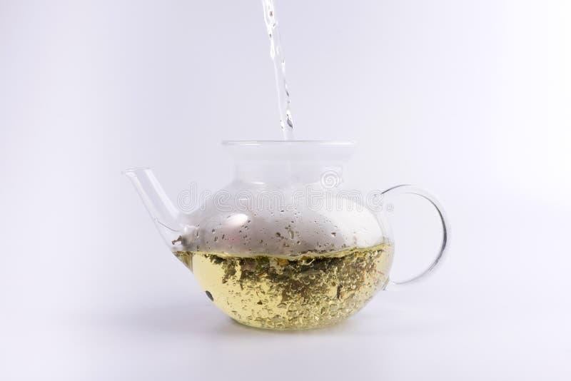 Лить горячая вода к стеклянному чайнику с травяным чаем, изолированным на белизне стоковые изображения rf