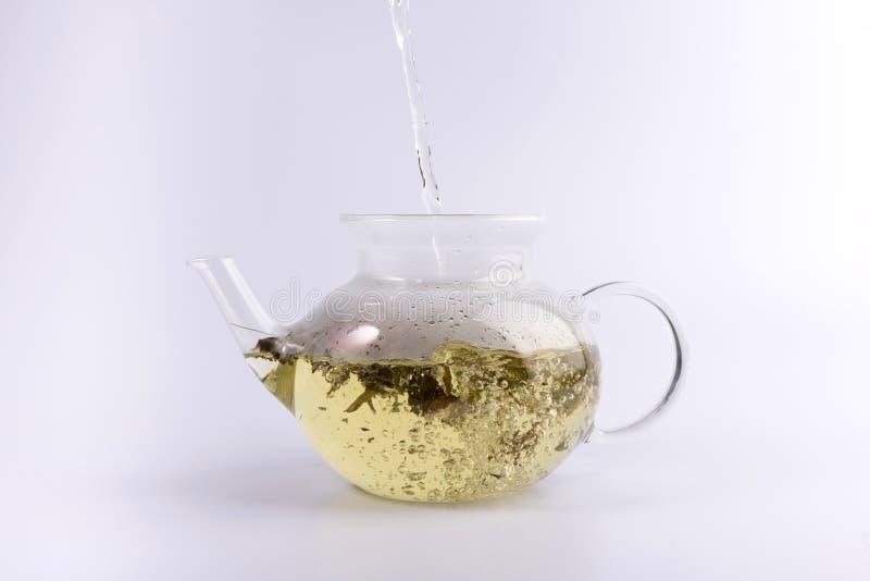 Лить горячая вода к стеклянному чайнику с травяным чаем, изолированным на белизне стоковое изображение