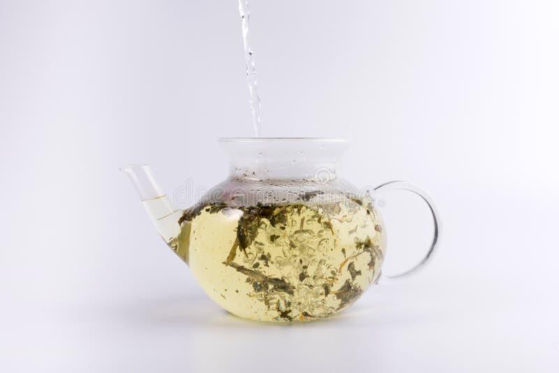 Лить горячая вода к стеклянному чайнику с травяным чаем, изолированным на белизне стоковые изображения