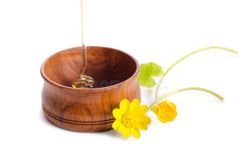 Лить мед в деревянном шаре с желтыми цветками на белой предпосылке стоковое изображение