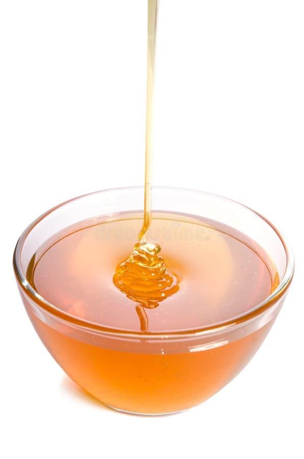 Лить мед в стеклянный шар на белой предпосылке стоковая фотография