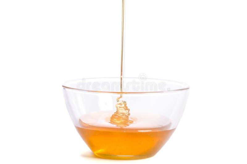 Лить мед в стеклянный шар на белой предпосылке стоковое изображение