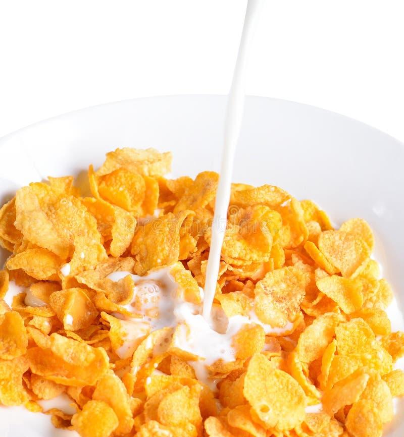 Лить молоко в шар хлопьев мозоли стоковые фото