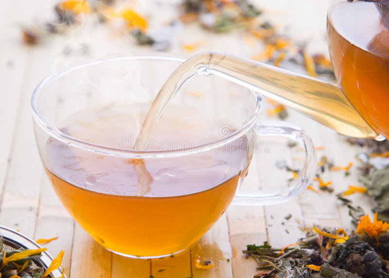 Лить травяной чай в чашке стоковые фотографии rf