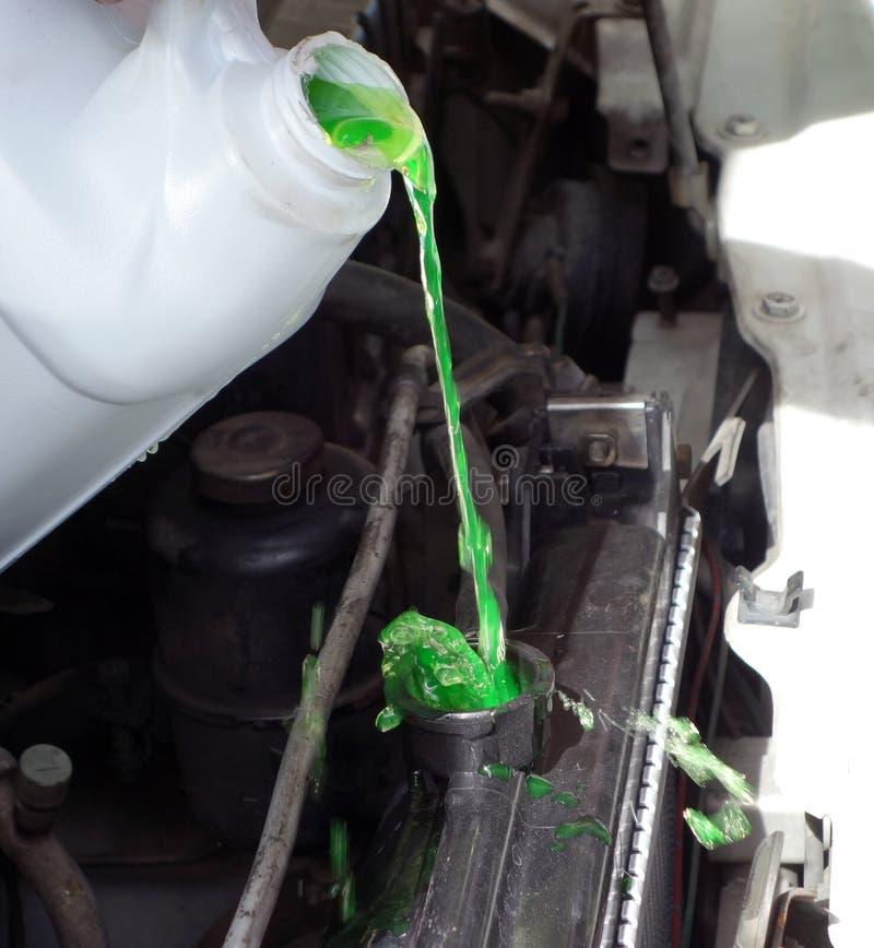 Лить хладоагент двигателя в автомобиль стоковое изображение