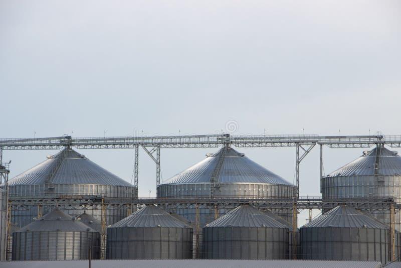 Лифт, огромный контейнер зернохранилища на фоне голубого неба стоковые изображения rf
