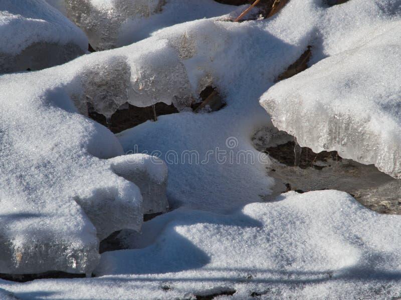 Лихорадка весны стоковое изображение rf