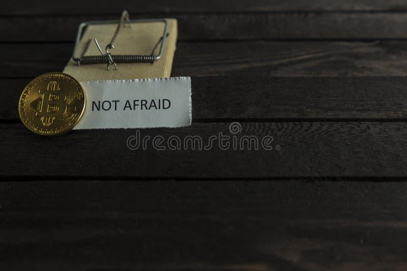Ловушка мыши, frontside bitcoin и слово не испуганное стоковое изображение rf