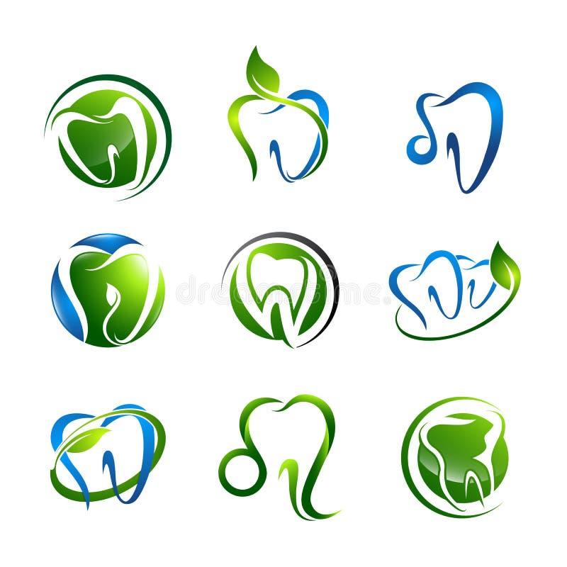 Логотип зуба установил зубоврачебный медицинский дизайн концепции здравоохранения Вектор элемента шаблона символа графический иллюстрация вектора