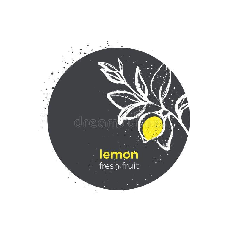 Логотип природы вектора Лимон, плодоовощ желтого цвета Стикер нарисованный рукой иллюстрация вектора