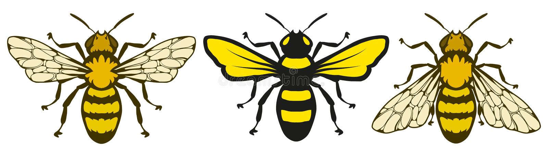 Логотип пчелы, пчела меда на белой предпосылке, эскизе руки вычерченном пчелы иллюстрация вектора