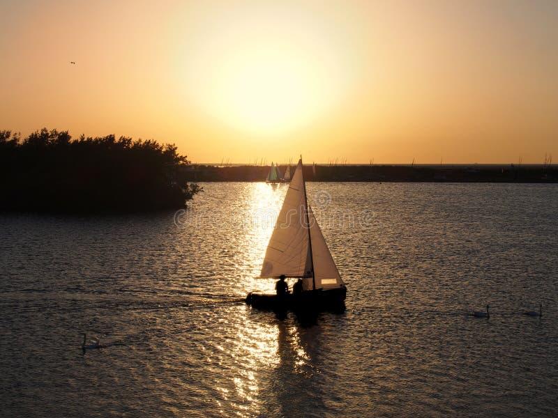 лодка, плывущая по озеру через золотой закат с неизвестными людьми в силуэте и лебедями, плавающими в стоковое фото