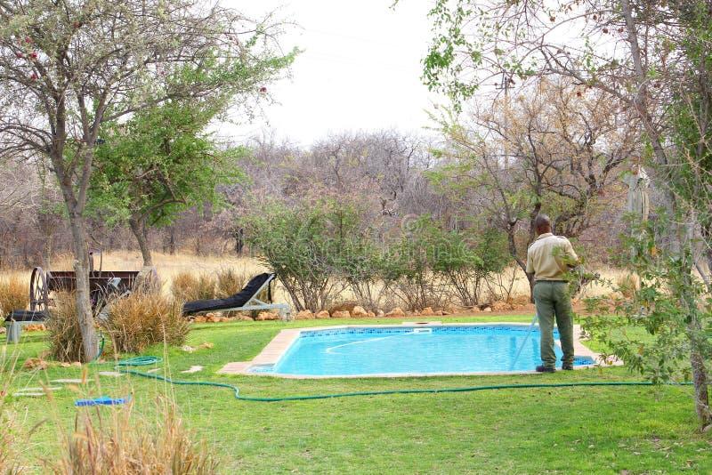 Ложа бассейна чистки работника, Намибия стоковое фото rf