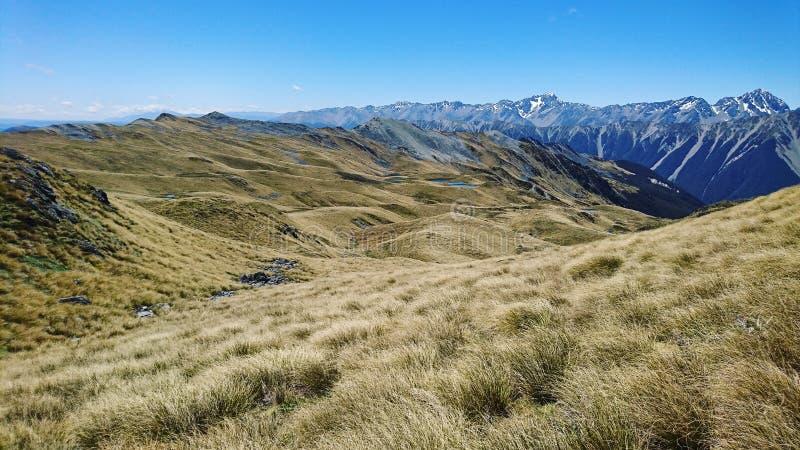 ложа Новая Зеландия wakataki стоковое изображение rf