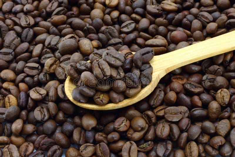 ложка кофе фасолей деревянная стоковое изображение rf