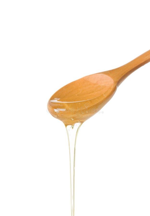 ложка меда деревянная стоковая фотография