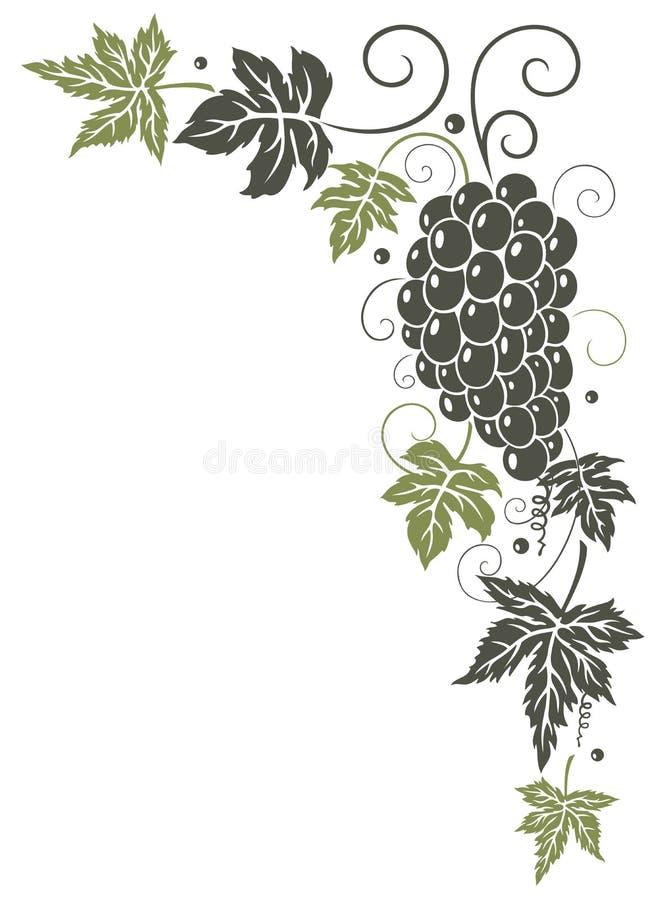 Лоза, листья, виноградины иллюстрация вектора
