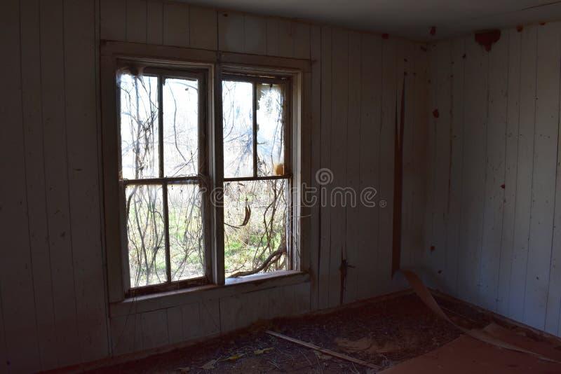 Лоза покрыла окна в покинутом доме стоковые изображения