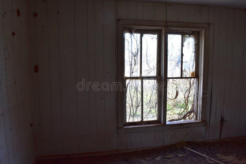 Лоза покрыла окна в покинутом доме стоковое фото