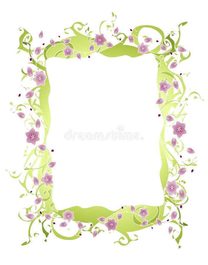 лоза пурпура цветка граници иллюстрация вектора