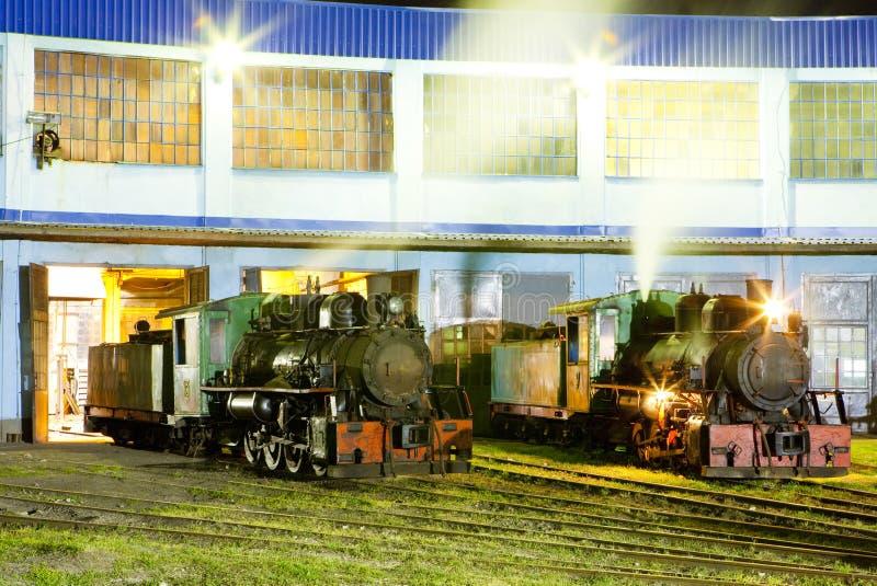 локомотивы пара в депо вечером, Kostolac, Сербия стоковые изображения rf