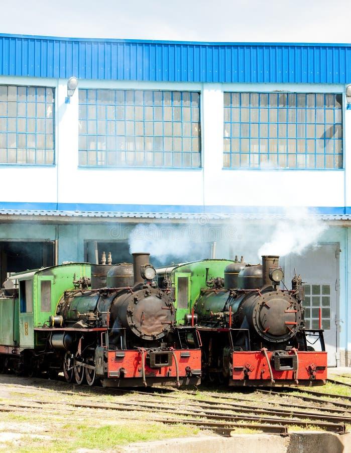 локомотивы пара в депо, Kostolac, Сербии стоковое фото