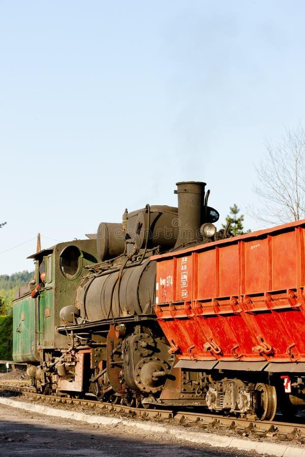 локомотив пара, пункт доставки в Oskova, Босния и Hercegovi стоковое фото rf