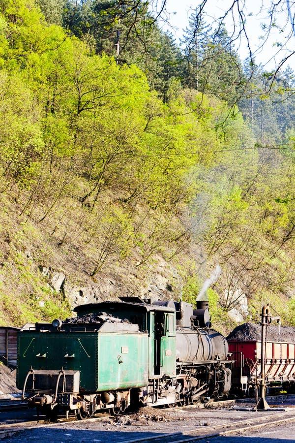 локомотив пара, пункт доставки в Oskova, Босния и Hercegovi стоковое фото
