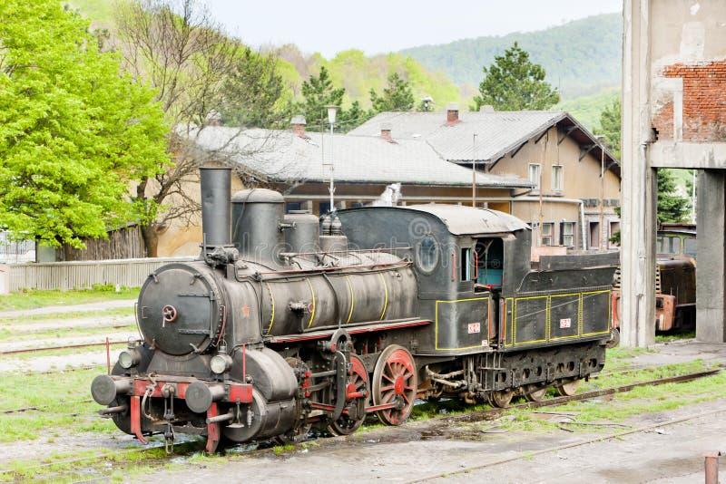 локомотив пара & x28; 126 014& x29; , Resavica, Сербия стоковые фотографии rf