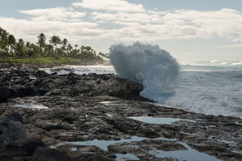 Ломая волна на Оаху, Гаваи стоковые изображения