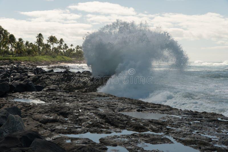 Ломая волна на Оаху, Гаваи стоковое фото rf