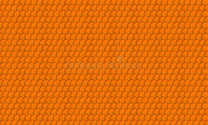 Ломтики моркови стоковые фото
