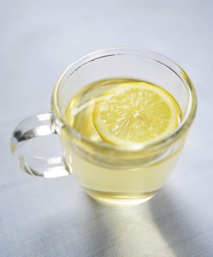ломтик кружки лимона стоковое изображение