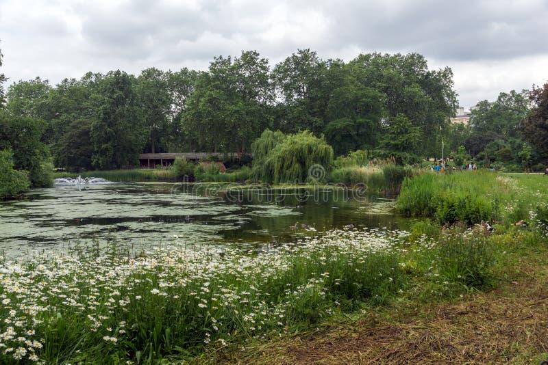 ЛОНДОН, АНГЛИЯ - 17-ОЕ ИЮНЯ 2016: Озеро в парке ` St James, Лондоне, Великобритании стоковые изображения