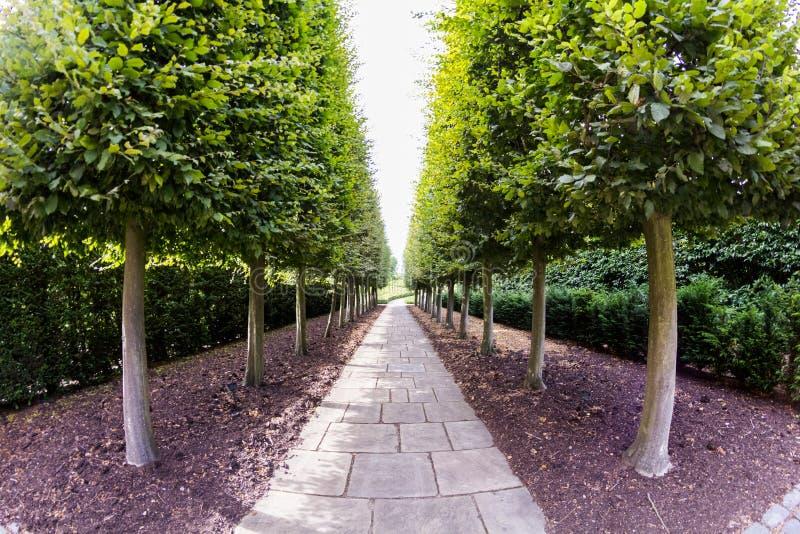 28 07 2015, ЛОНДОН, Великобритания, взгляд от садов Kew, королевских ботанических садов стоковое фото rf
