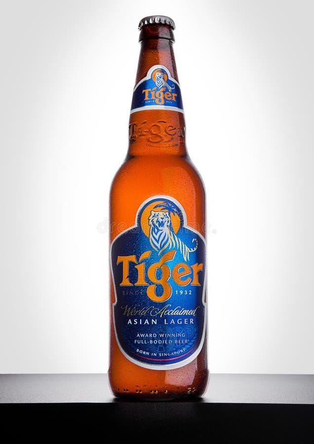 ЛОНДОН, ВЕЛИКОБРИТАНИЯ, 15-ОЕ ДЕКАБРЯ 2016: Бутылка пива тигра на белой предпосылке, сперва запущенная в 1932 пиво ` s Сингапура  стоковая фотография