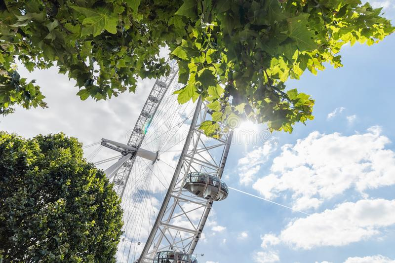 Лондон/Великобритания, 15-ое июля 2019 - глаз Лондона через густолиственные деревья против красивого голубого неба стоковые изображения rf
