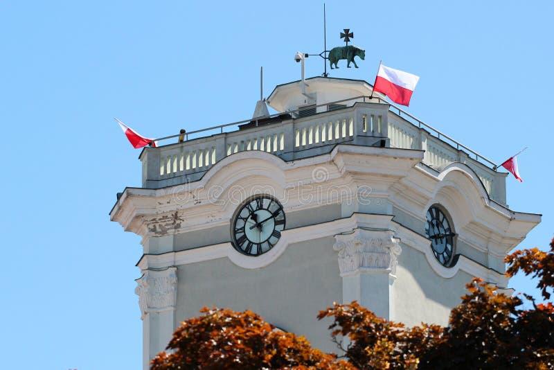 Лопасть погоды на башне с часами в Przemysl, Польше стоковая фотография