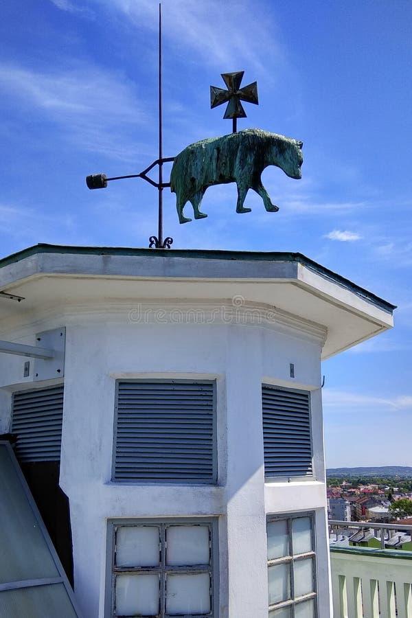 Лопасть погоды на башне с часами в Przemysl, Польше стоковая фотография rf