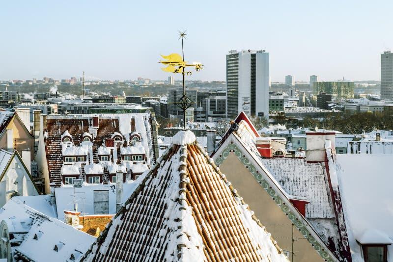 Лопасть погоды на крыше старого городка в Таллине стоковые изображения rf
