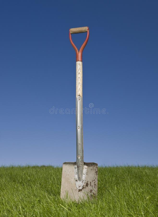 лопаткоулавливатель зеленого цвета травы стоковое изображение rf