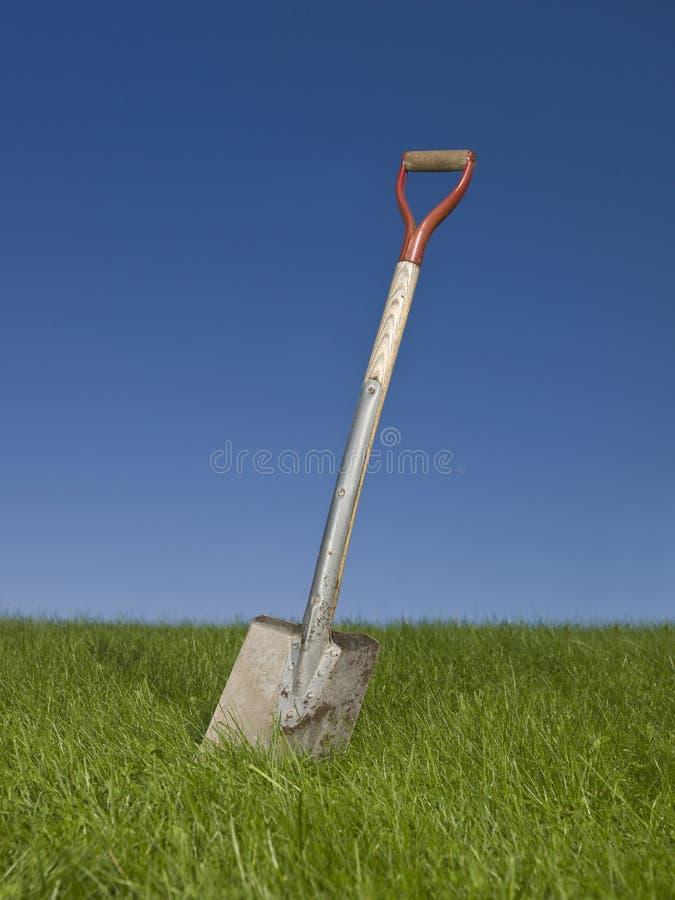 лопаткоулавливатель зеленого цвета травы стоковое фото rf