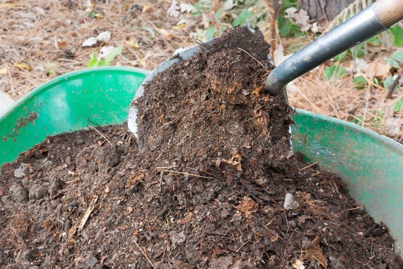 Лопаткоулавливатель льет компост в тачку стоковые фотографии rf