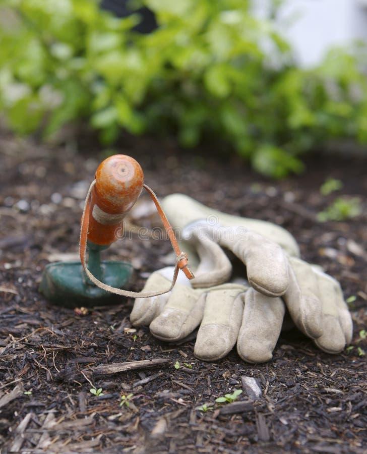лопаткоулавливатель перчаток стоковая фотография rf