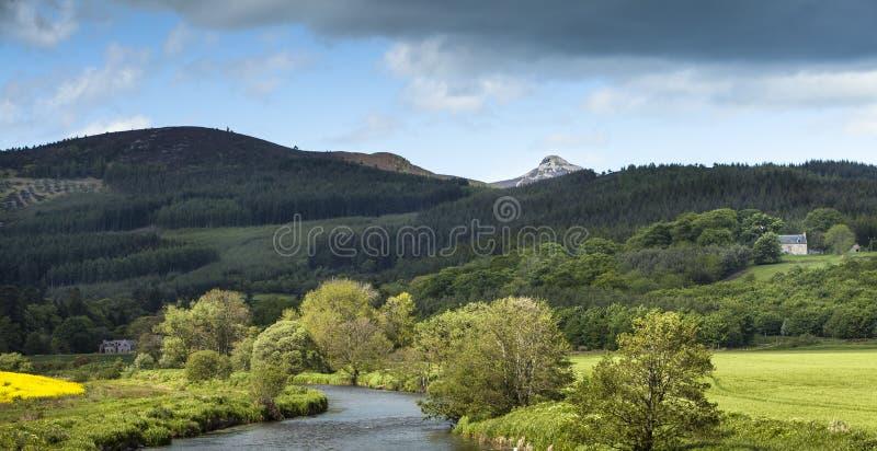 Лорды Горло & Bennachie в Шотландии стоковая фотография