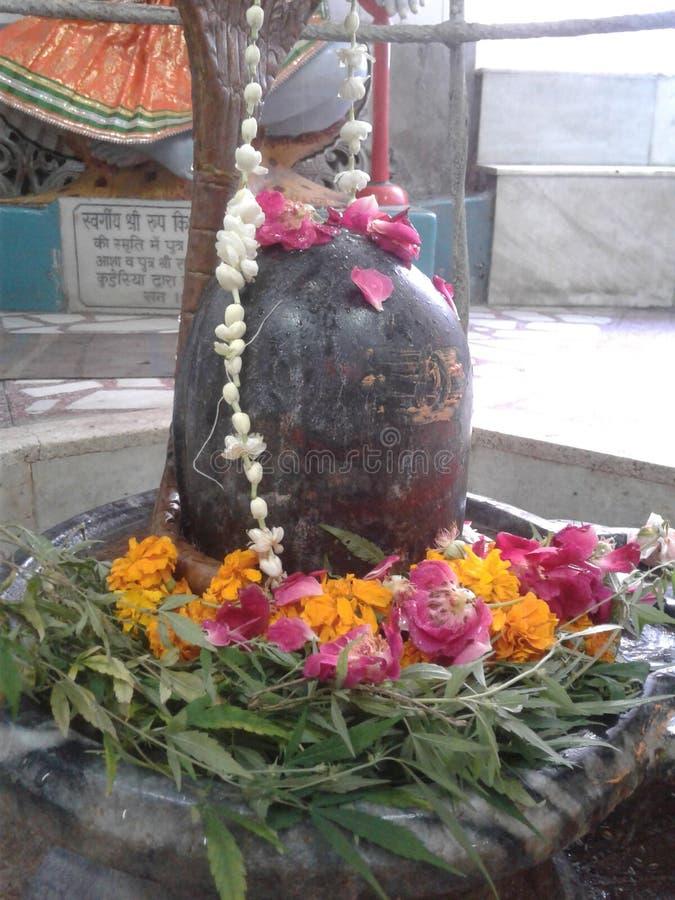 Лорд Shiva стоковые изображения rf