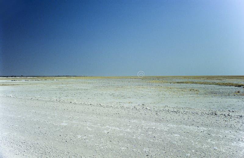 Лоток Etosha, озеро сол в национальном парке Etosha, Намибия стоковое фото rf