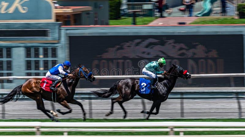 Лошадиные скачки парка Santa Anita стоковое изображение