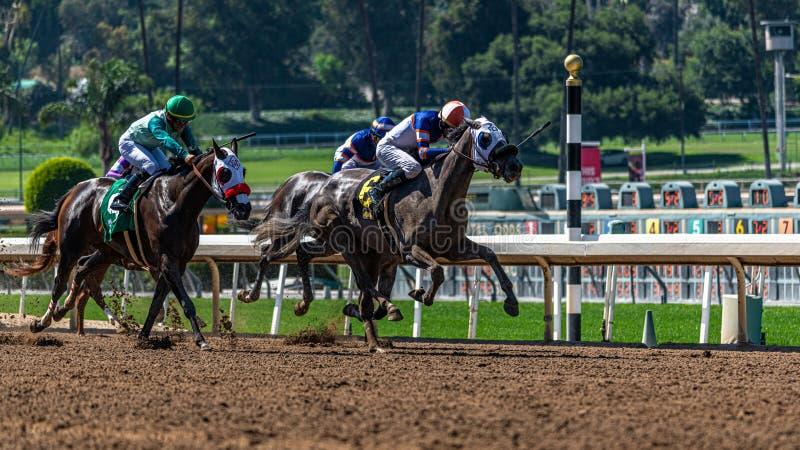 Лошадиные скачки парка Santa Anita стоковое фото